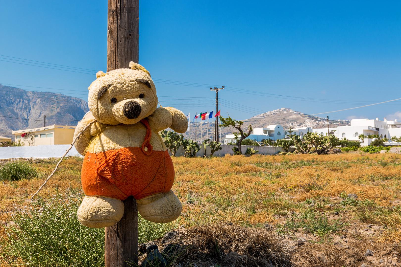 Armer Teddy!