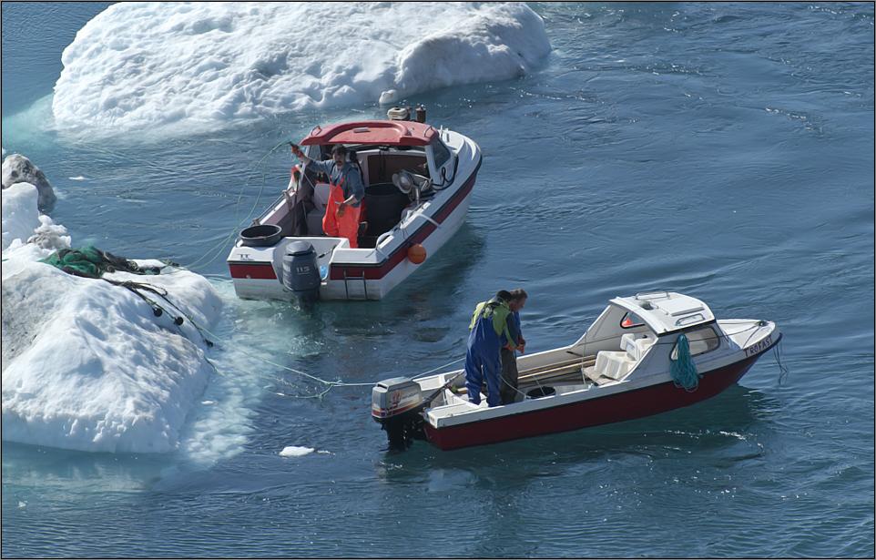 armut und überfischung durch die fischindustrie