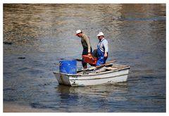 Arrivati......Pesce e Pescatori Portogallo