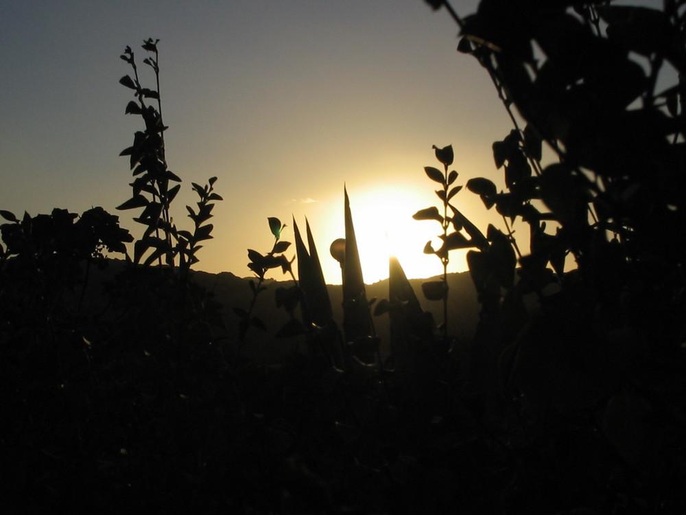 arrive le soleil