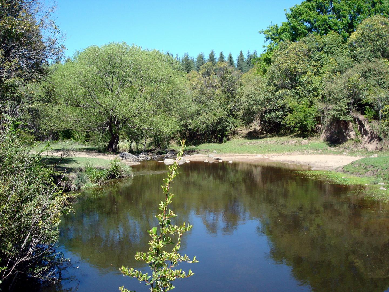 Arroyo serrano