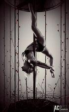 art of pole