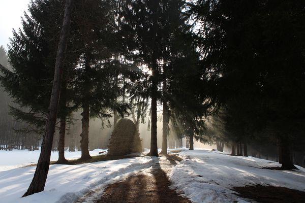 Arte Sella - Sole nella nebbia