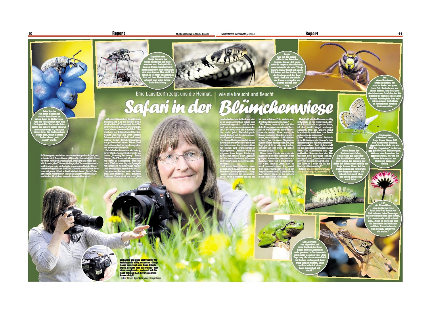 Artikel aus der MoPo Dresden vom 04.05.2014