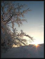 A.S. (Artificial Sundown)