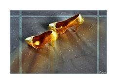 Aschenputtels goldene Schuhe