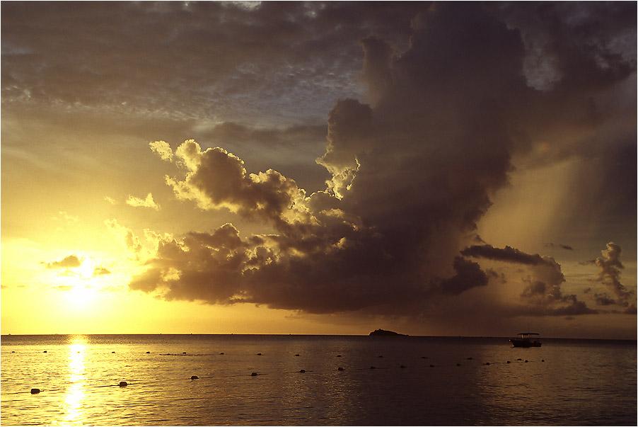Aschewolken verdunkeln den Himmel