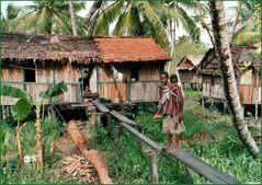 Asmat Dorf Warse