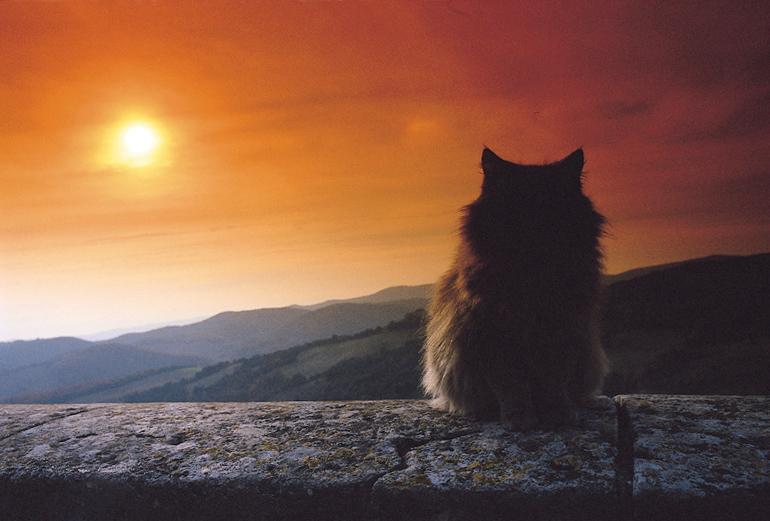 Aspettando il tramonto