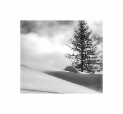 aspettando la neve /2