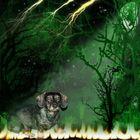 Asra im Wald