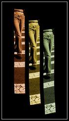 asses 'n' stripes