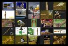 AST-Projekt - Collage Vol.10 [ÄSTe #226-#250]