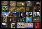 AST-Projekt - Collage Vol.6 [ÄSTe #126-#150]