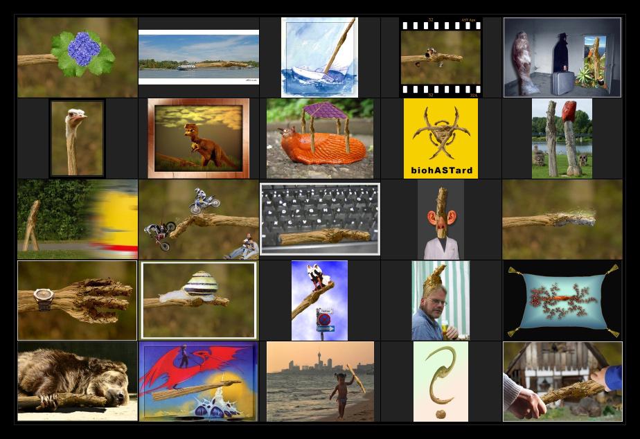 AST-Projekt - Collage Vol.8 [ÄSTe #176-#200]