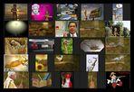 AST-Projekt - Collage Vol.9 [ÄSTe #201-#225]