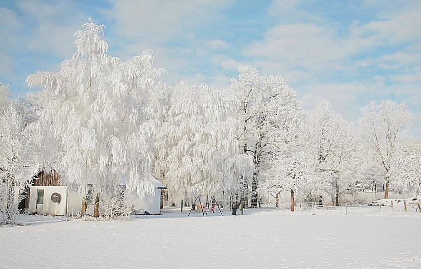 Asyl im Winter