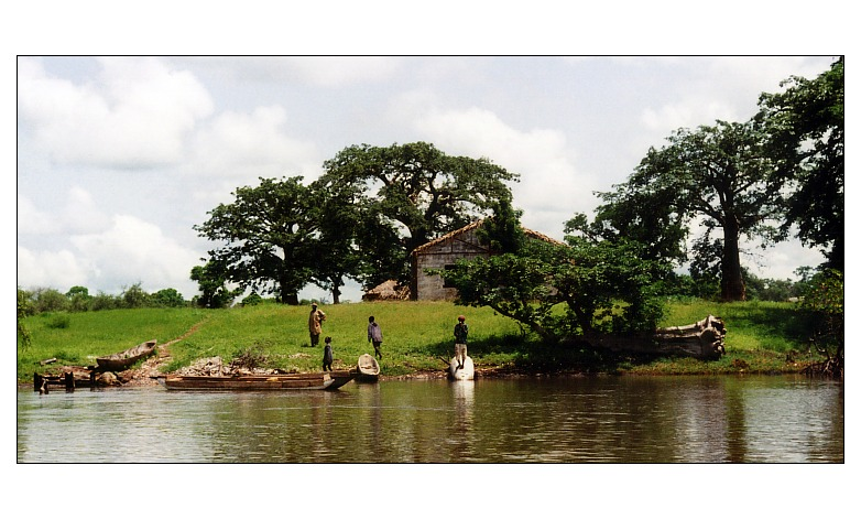 at the banks of the Gambia River