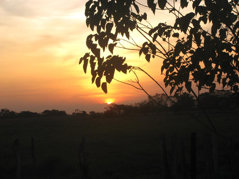 ATARDECER ARAUCA COLOMBIA