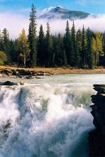 Athabasca-Fall