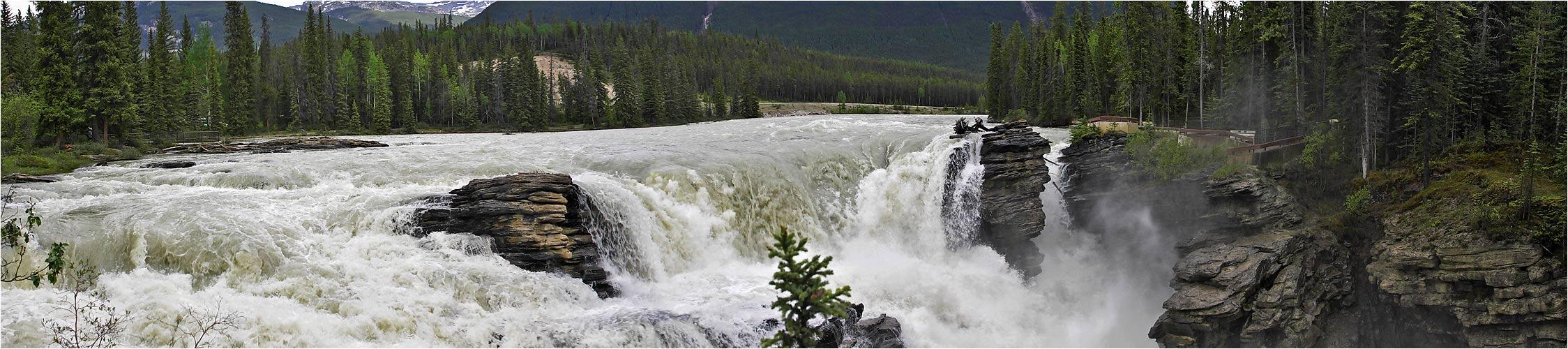 [ athabasca falls ]