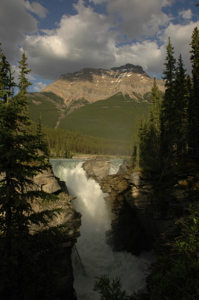 Athabasca Falls - Icefields Parkway
