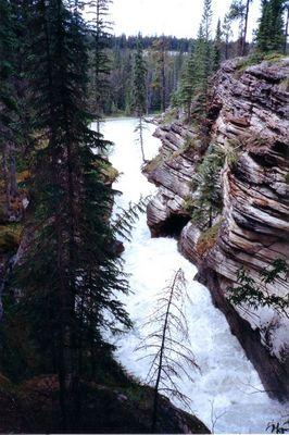 Athabasca Falls (Jasper National Park) - Canada