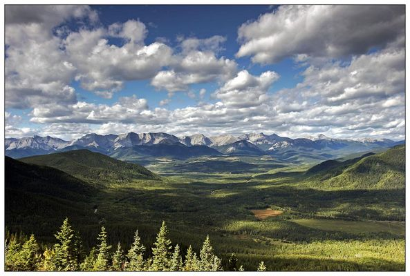 Athabasca Lookout