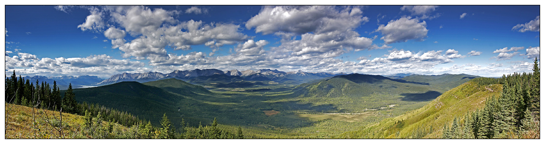 Athabasca Lookout: Panorama