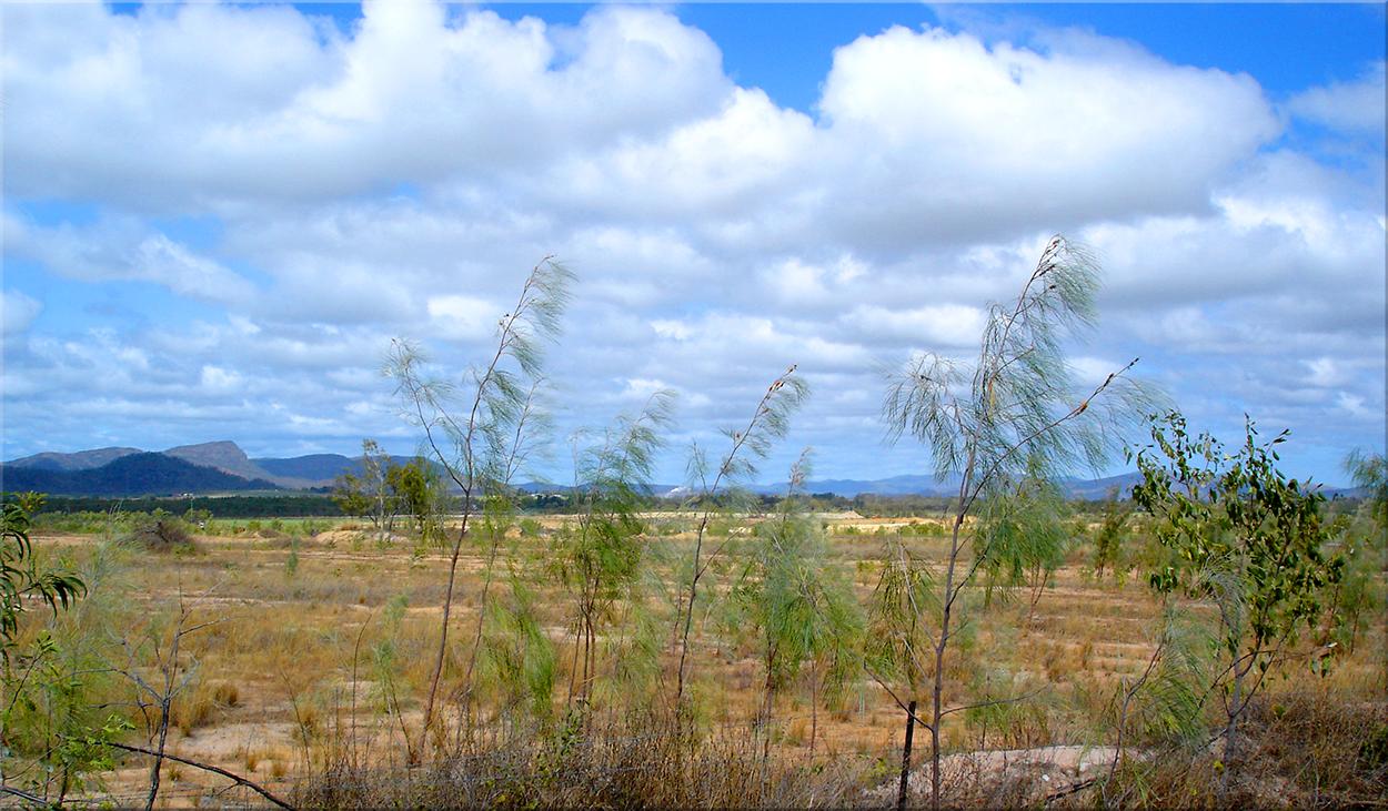 Atherton Tablelands, II [b]