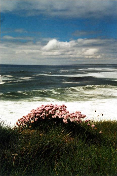 Atlantic view