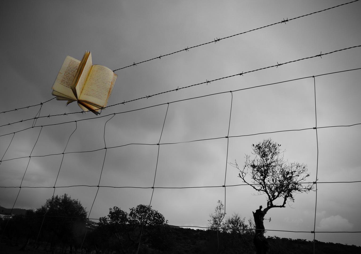 atrapado por la lectura