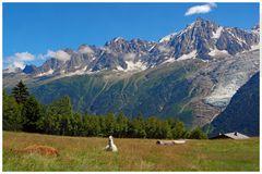 attenti ! sono le Alpi e non le Ande...