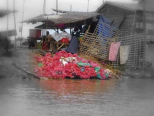 Au bord du Tonle Sap - Cambodge