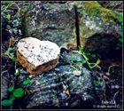 Au coeur de la nature,histoire nostalgique se rèvéle.