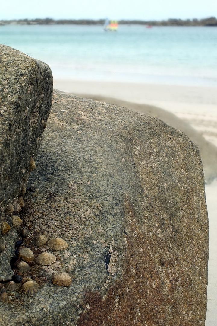 au creu d'un rocher