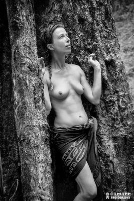 Au creux de l'arbre.