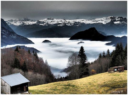Au dessus du brouillard