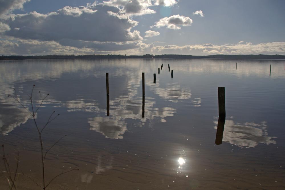 Au lac de Vielle st Girons ( Landes )