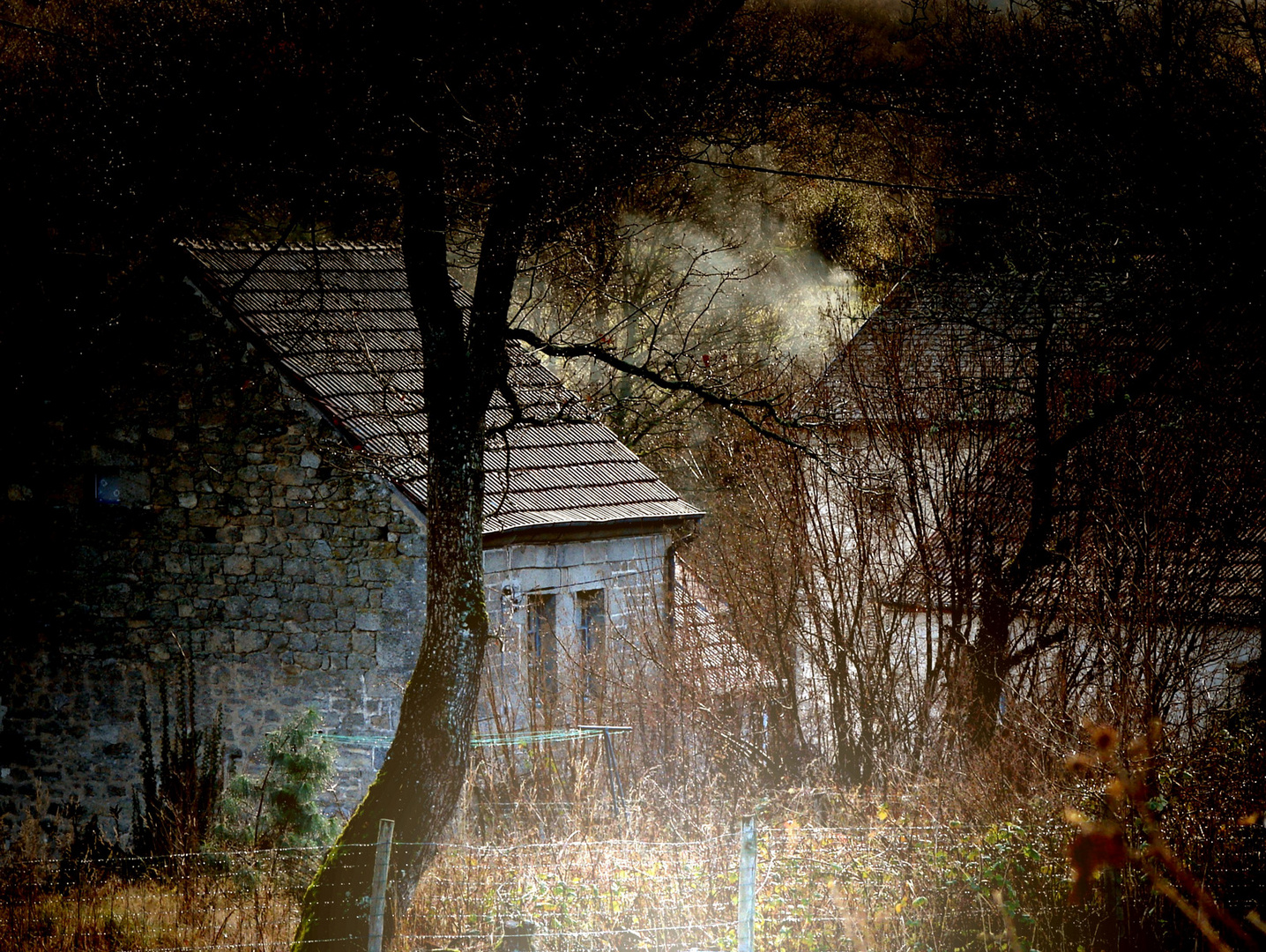 Au petit matin , près de notre petite maison en Creuse.