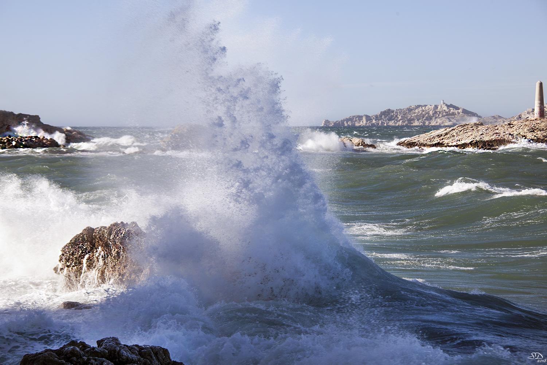 Au plus prés de la vague