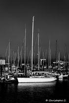Au Port d'Arcachon...