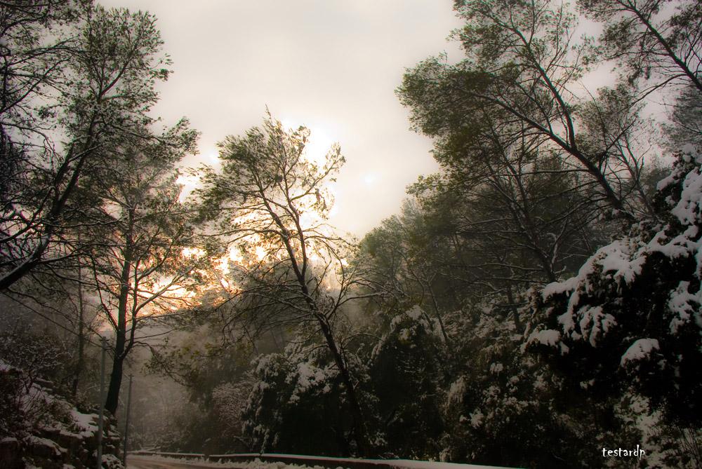 aubagne sous la neige
