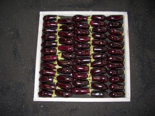Auberginen in Lebensmittelgefangenheit