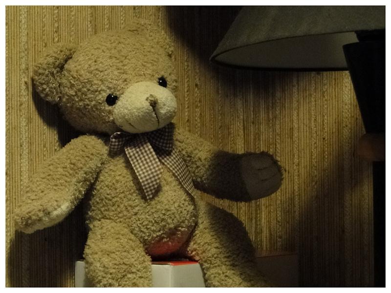 auch der Bär scheint recht zuversichtlich, daß