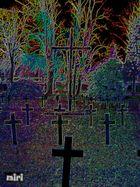auch der Frauenfriedhof in Zittau