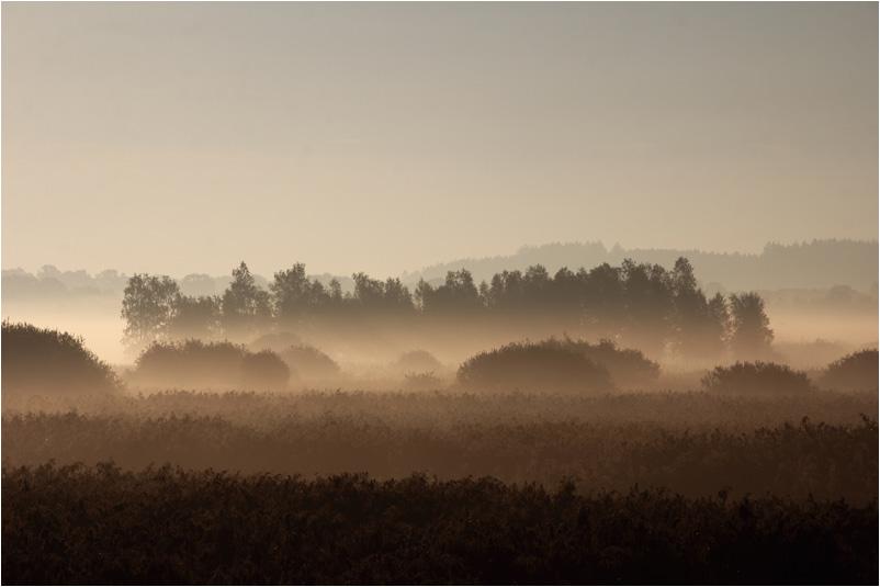 auch der Nebel hat seinen Charme