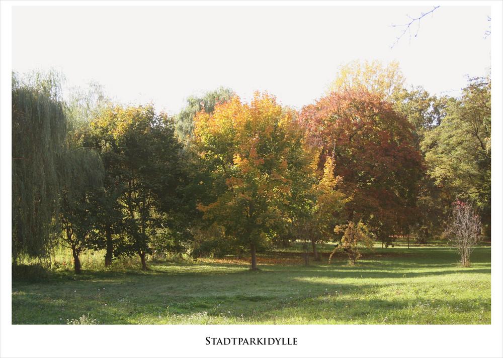 Auch der November hat schöne Tage...