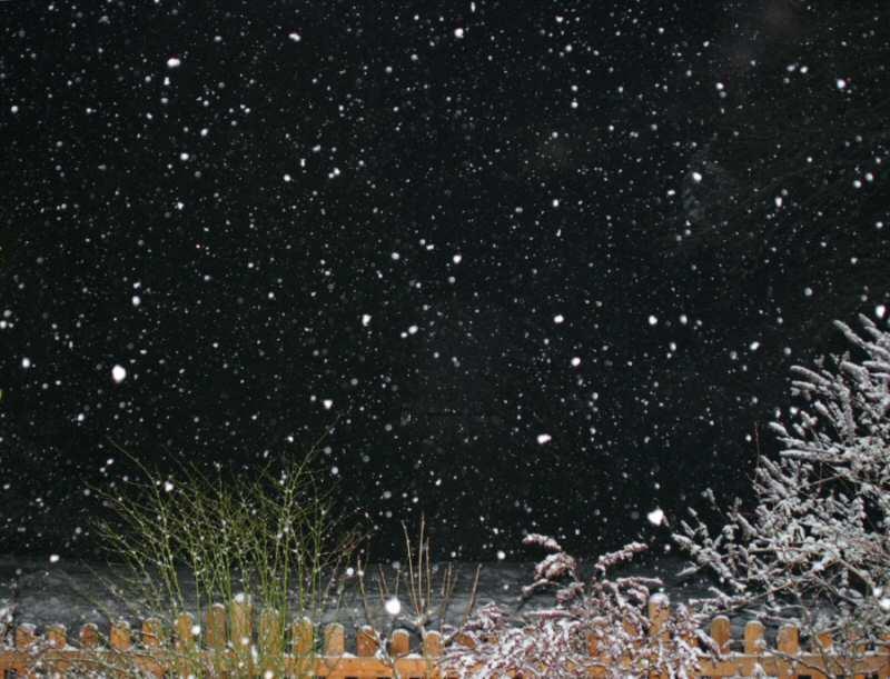 Auch der Odenwald versinkt im Schnee