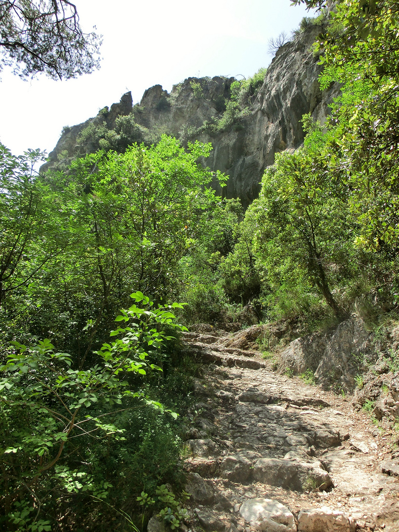 auch der schönste Weg kann steinig sein..
